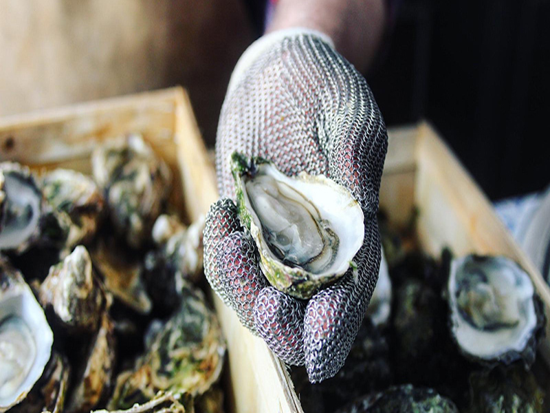 International Oyster Day In de Agenda The Daily Dutchy JP Oyster Bar