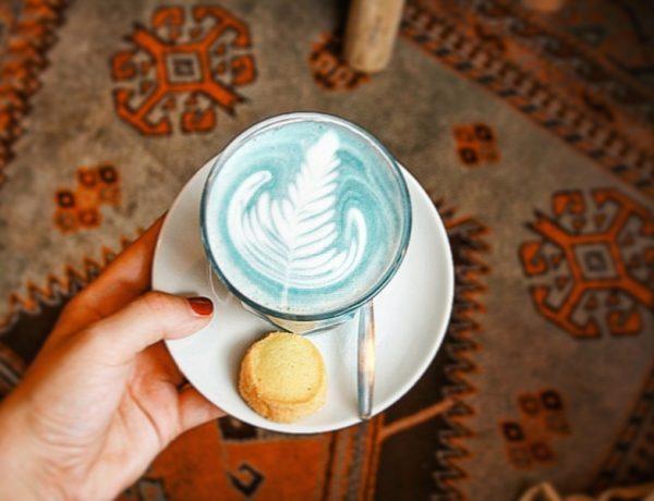 Koffie drinken hotspot Zwolle