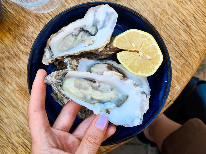 oesters sjas